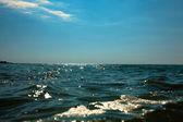 Sea horizon — Stock Photo