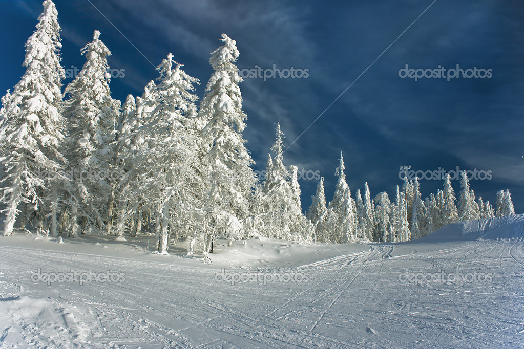 Majestic  winter landscape over blue sky — Stock Photo #2565619