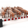 Swine flu concept — Stock Photo #2629273