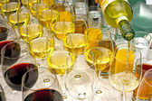 Wine glasses row — Stock fotografie