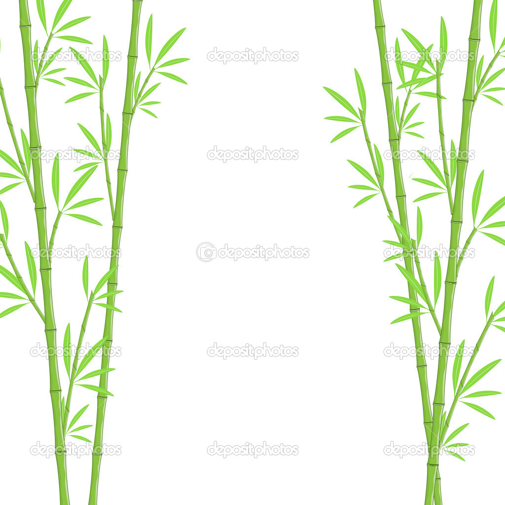 Bamboo background  — Stock Vector #2557310
