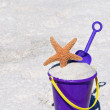 Beach Bucket with Starfish - Stockfoto
