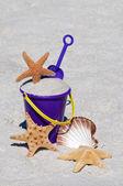 ヒトデおよび海の貝殻を持つビーチバ ケット — ストック写真