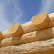 Log Home Construction — Stock Photo
