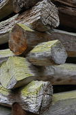 Log Cabin Construction Details — Stock Photo