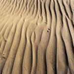 Maspalomas Dunes — Stock Photo #2563836