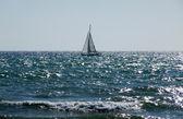 Sail Boat In Sea On Brighton Coast — Stock Photo