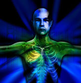 X Ray Man Torso — Stock Photo