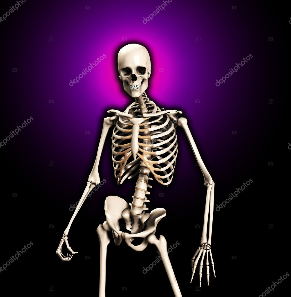 Standing skeleton suitable for medical or Halloween concepts. — Stock Photo #2575020