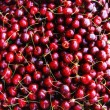 Cherries — Stock Photo #2568702