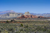 Red Rocks near Kodachrome Basin — Stock Photo