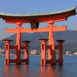 Torii, Shinto Shrine — Foto Stock #2568661
