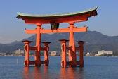 Torii, xintoísmo santuário — Foto Stock