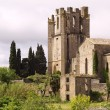 St Marys Abbey Lagrasse - Stock Photo