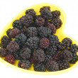 Frozen Blackberries — Stock Photo #2571114
