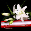 Stock Photo: White gold and Lilies
