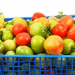 Tomatoes in the blue box — Stock Photo