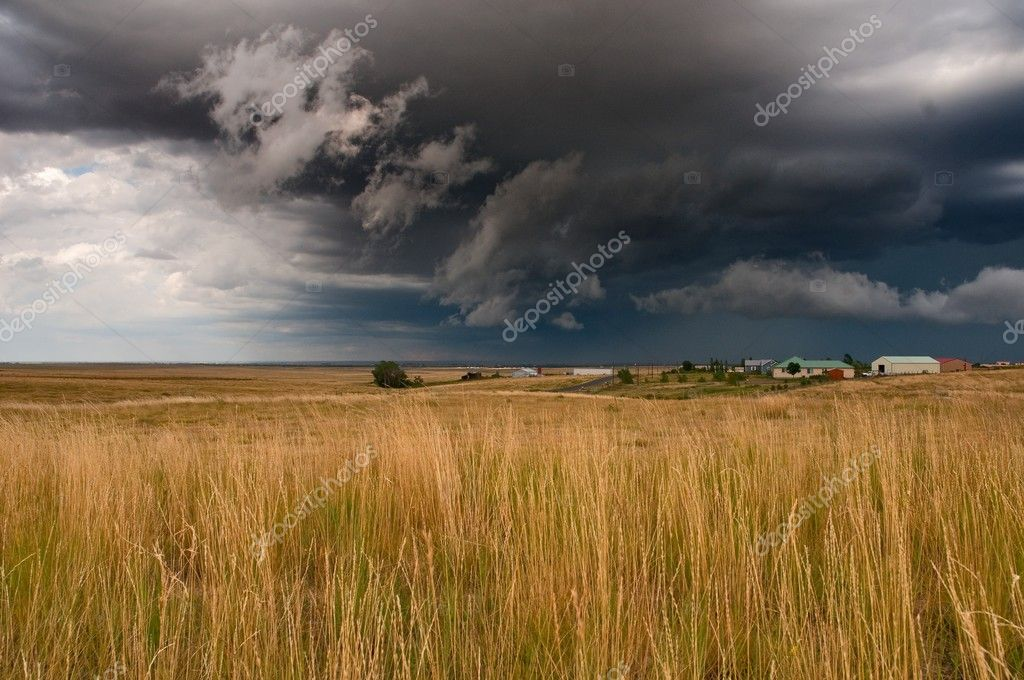 Ominous clouds and tall grass. — Stock Photo #2535021