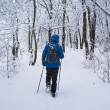 A backpacker man going in forest — Stock Photo #2595414
