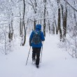 Stock Photo: Backpacker mgoing in forest