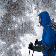 A backpacker man in winter forest - Stock Photo