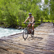 Stock Photo: Mountain biker goes on old wooden bridge