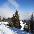 Footpath in winter mountains — Stock Photo #2643837