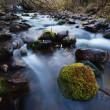 řeka v horském lese — Stock fotografie
