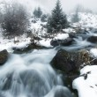 Fog and winter creek — Stock Photo #2652167