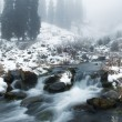 mist en winter creek — Stockfoto
