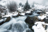 Fog and winter creek — Stock Photo