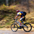 Fast motion mountain biker in forest — Stock Photo