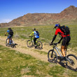 Stock Photo: Mountain bikers in spring steppe