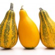Foto Stock: Group of small pumpkin