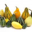 Group of small pumpkin — Foto Stock