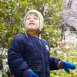 Boy in in autumn park — Stock Photo
