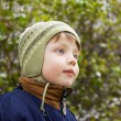 Stock Photo: Boy in in autumn park