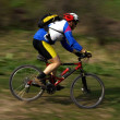 Speed motion mountain biker — Stock Photo #2672533