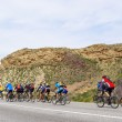 Stock Photo: Mountain bikers group on road in desert
