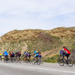 Mountain bikers group on road in desert — Stockfoto