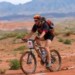 Royalty-Free Stock Photo: Mountain biker racing in desert mountains