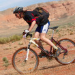 Mountain biker racing in desert canyon — Stock Photo