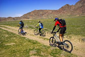 Mountain bikers in spring steppe — 图库照片