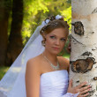 Bride blonde and birch — Stock Photo