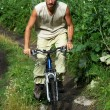 Mountain biker on old rural road — Stock Photo #2682134