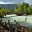 Mountain river and old wooden bridge — Stock Photo