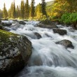 Sunrise and mountain flowing stream — Stock Photo