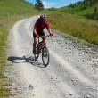 Stock Photo: Bikers downhill on rural road