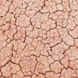 Stock Photo: Dry surface texture