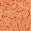 Stock Photo: Red dry surface texture